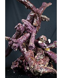 Real Reef Rock Branched - 17 KG