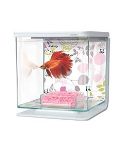 Marina betta kit bloemen 2L