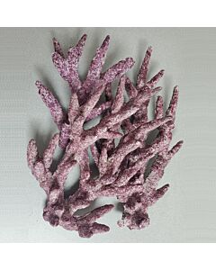 Real Reef Rock Branched - PER KG
