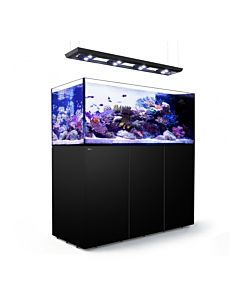 Red Sea Reefer Peninsula P650 Deluxe
